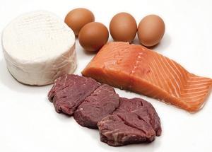 Dierlijke eiwitten