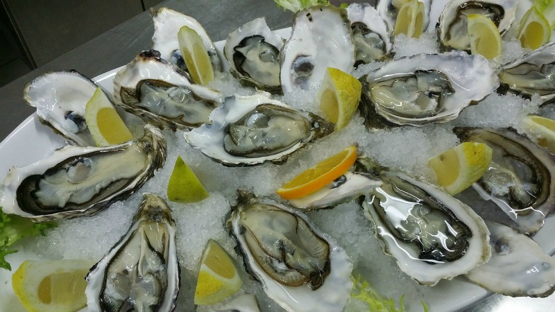 oysters-608905_1280.jpg