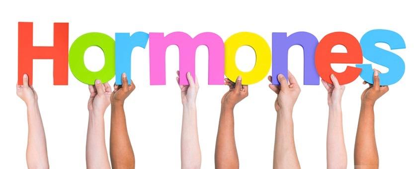 hormonen balans
